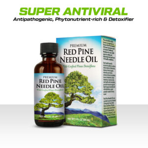Organic Pinus densiflora Red Pine Needle Oil